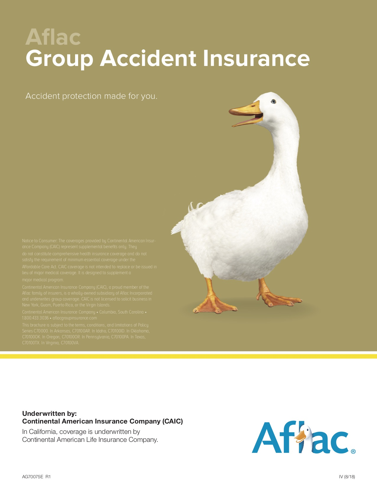 Accident Insurance Details