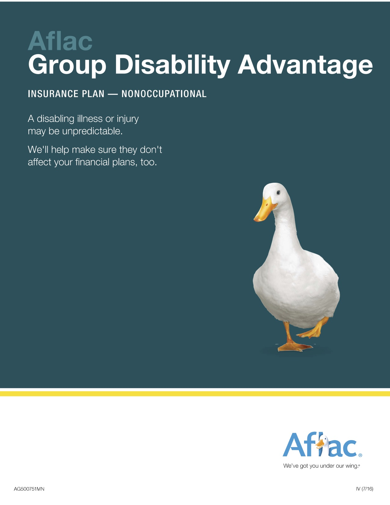 Disability Insurance Details-1